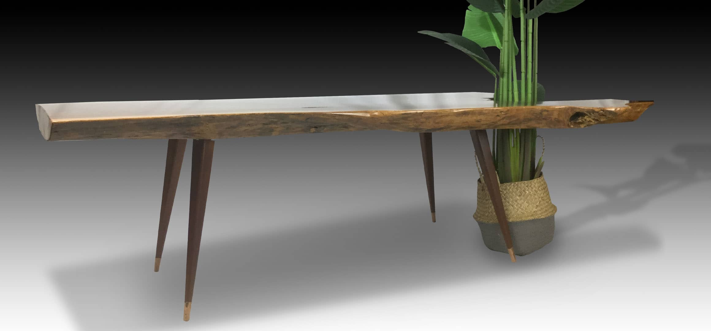 Leopard live edge Walnut wood coffee table with plant side view 3